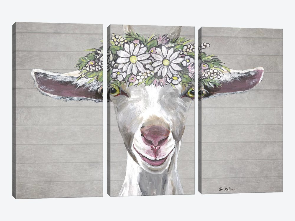 Patsy The Goat With Daisy Flower Crown by Hippie Hound Studios 3-piece Canvas Wall Art