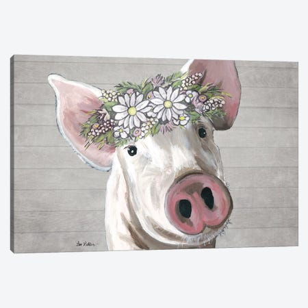 Petunia The Pig With Daisies Farmhouse Style Canvas Print #HHS535} by Hippie Hound Studios Canvas Print