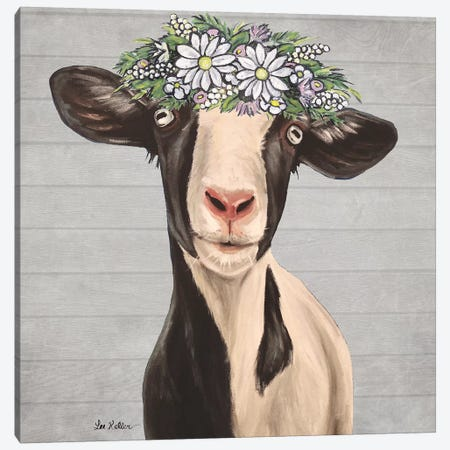 Luna The Goat With Daisies Farmhouse Style Canvas Print #HHS536} by Hippie Hound Studios Canvas Art Print