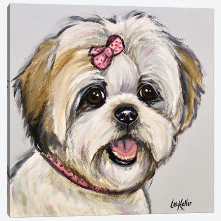 Shih Tzu Maggie Canvas Print #HHS537} by Hippie Hound Studios Canvas Print