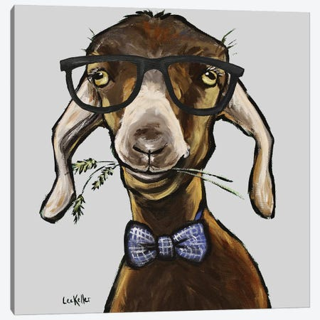 Billy The Kid, Goat With Glasses Canvas Print #HHS542} by Hippie Hound Studios Art Print