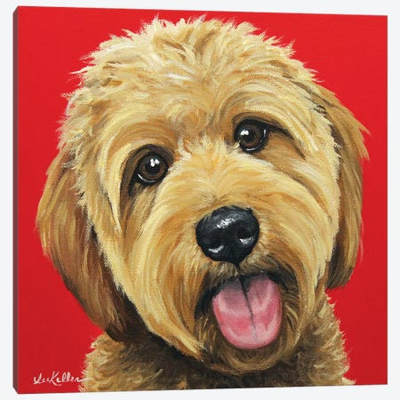 Apricot Golden Doodle On Red Canvas Print #HHS550} by Hippie Hound Studios Canvas Art