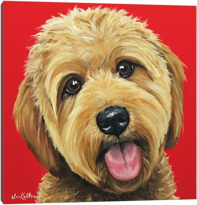 Apricot Golden Doodle On Red Canvas Art Print