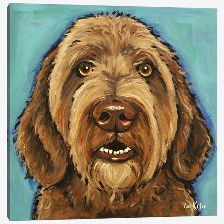 Chocolate Golden Doodle Canvas Print #HHS551} by Hippie Hound Studios Canvas Artwork