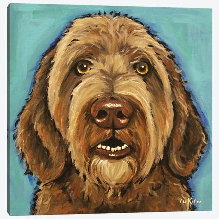 Chocolate Golden Doodle Canvas Print #HHS551} by Hippie Hound Studios Canvas Artwork