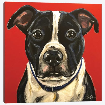 Pit Bull Canvas Print #HHS57} by Hippie Hound Studios Canvas Artwork
