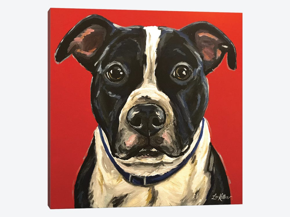 Pit Bull by Hippie Hound Studios 1-piece Canvas Artwork