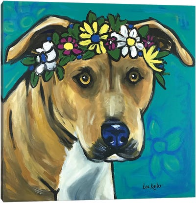 Pit Bull With Flowers Canvas Art Print