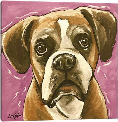 Boxer On Purple Canvas Art Print