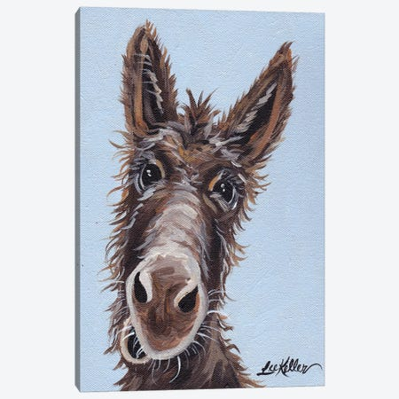 Rufus The Donkey On Blue Gray Canvas Print #HHS66} by Hippie Hound Studios Canvas Print