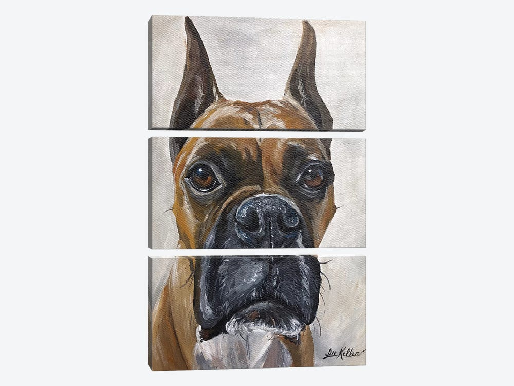 Boxer, So Serious  by Hippie Hound Studios 3-piece Canvas Wall Art