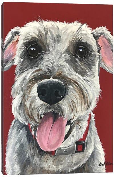 Schnauzer On Red Canvas Art Print