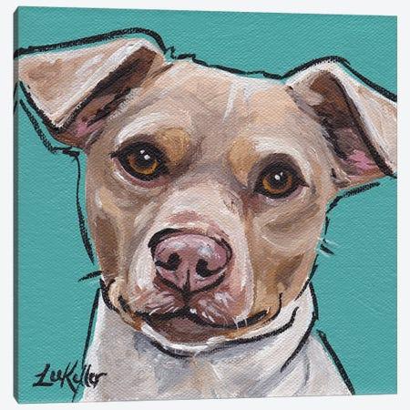 Brazilian Terrier I Canvas Print #HHS7} by Hippie Hound Studios Canvas Print