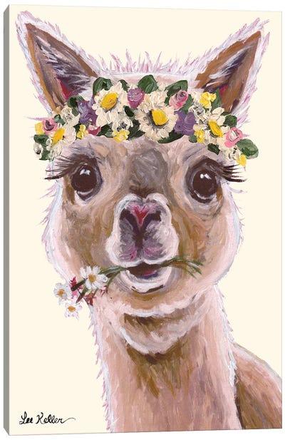 Alpaca With Flower Crown On Blush Canvas Art Print