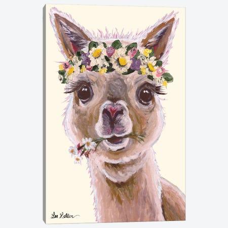 Alpaca With Flower Crown On Blush Canvas Print #HHS91} by Hippie Hound Studios Canvas Print
