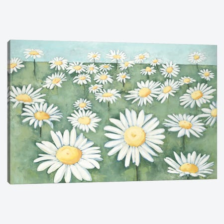 Field of Flowers Canvas Print #HIB102} by Randy Hibberd Canvas Art Print