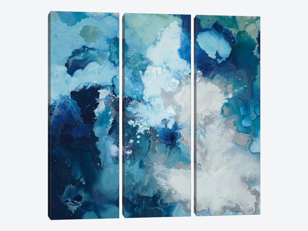Blue Flo by Randy Hibberd 3-piece Canvas Print