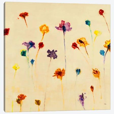 Blurred Dream Canvas Print #HIB18} by Randy Hibberd Art Print