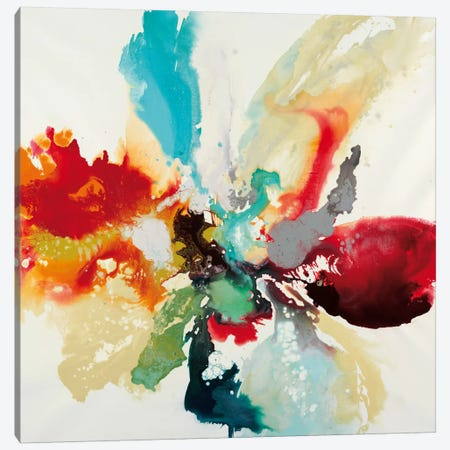 Color Expression Canvas Print #HIB20} by Randy Hibberd Canvas Wall Art