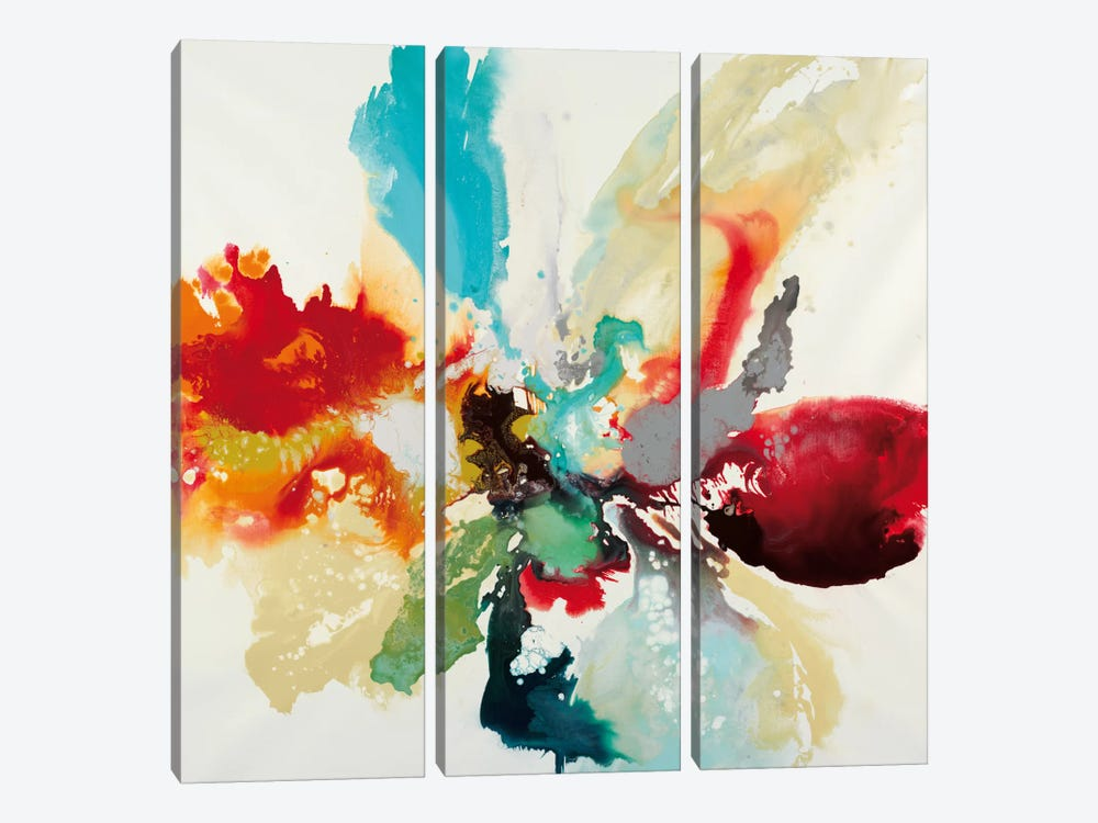 Color Expression by Randy Hibberd 3-piece Canvas Artwork