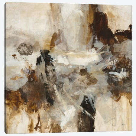 Effervescence Canvas Print #HIB24} by Randy Hibberd Canvas Print
