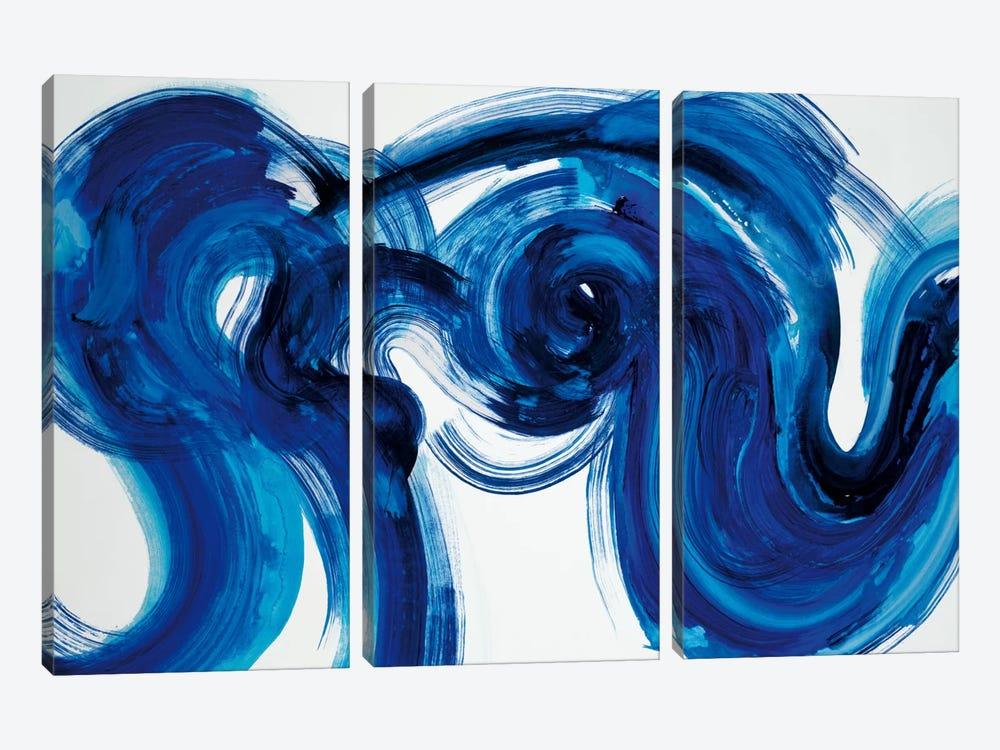 Flourish by Randy Hibberd 3-piece Canvas Art