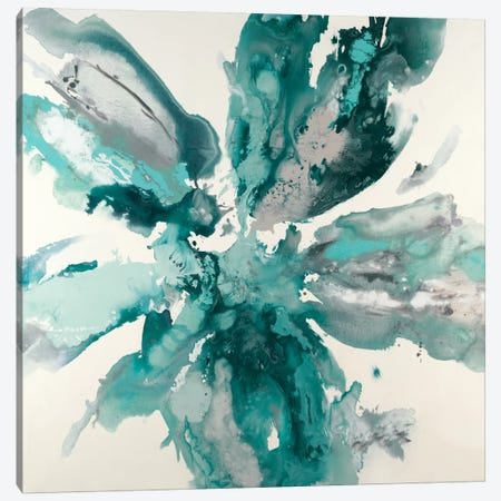 Flower Explosion 3-Piece Canvas #HIB27} by Randy Hibberd Art Print