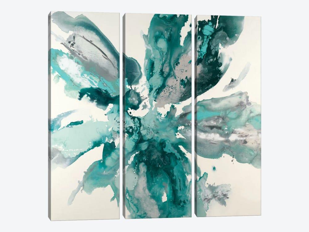 Flower Explosion by Randy Hibberd 3-piece Canvas Print