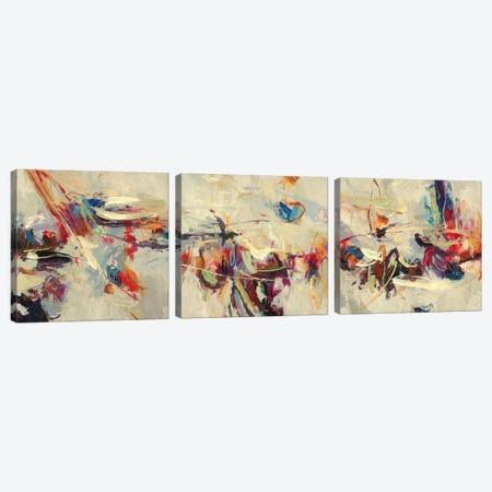 Positive Energy Triptych Canvas Print Set #HIB3HSET001} by Randy Hibberd Canvas Artwork