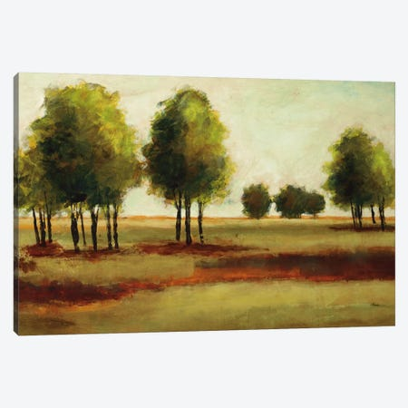 Luminous Landscape Canvas Print #HIB43} by Randy Hibberd Canvas Art