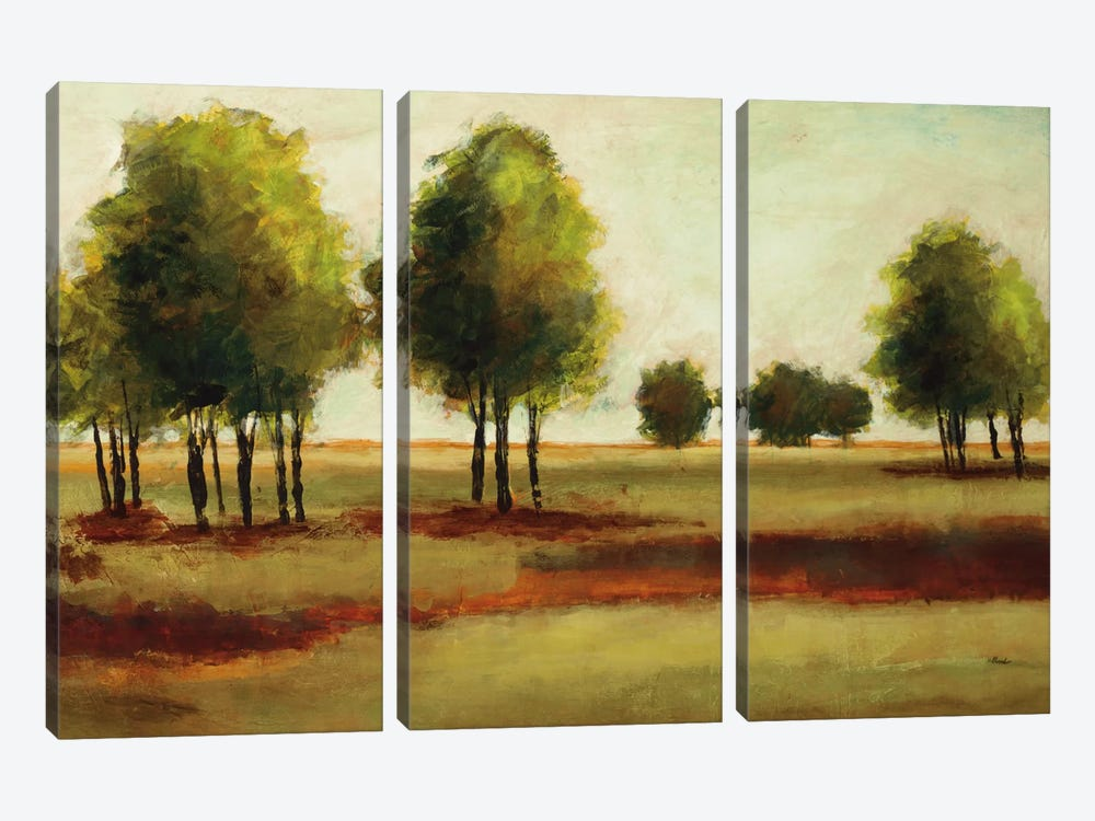 Luminous Landscape by Randy Hibberd 3-piece Art Print