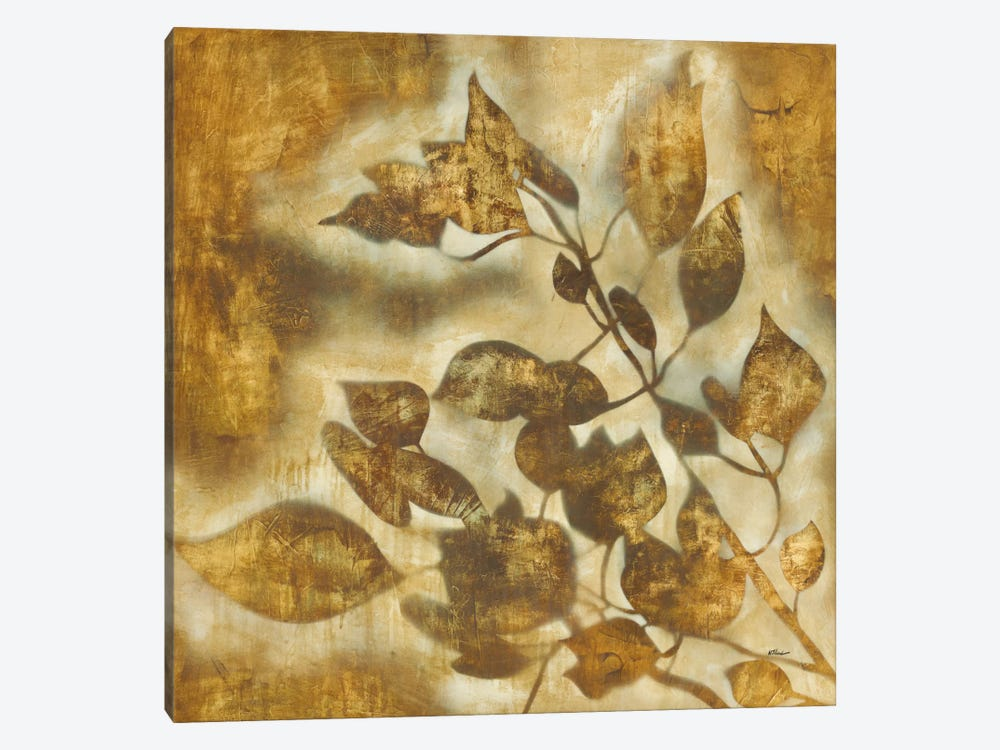 Organic Harmony II by Randy Hibberd 1-piece Canvas Wall Art