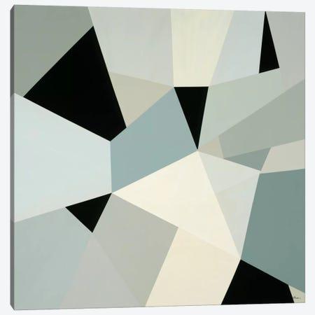 Adapt II Canvas Print #HIB4} by Randy Hibberd Canvas Artwork