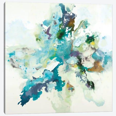 Remeet Canvas Print #HIB52} by Randy Hibberd Canvas Print