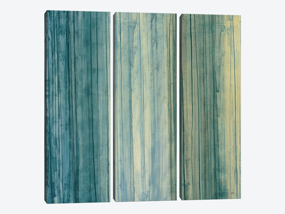 Shades Of Pale by Randy Hibberd 3-piece Canvas Art