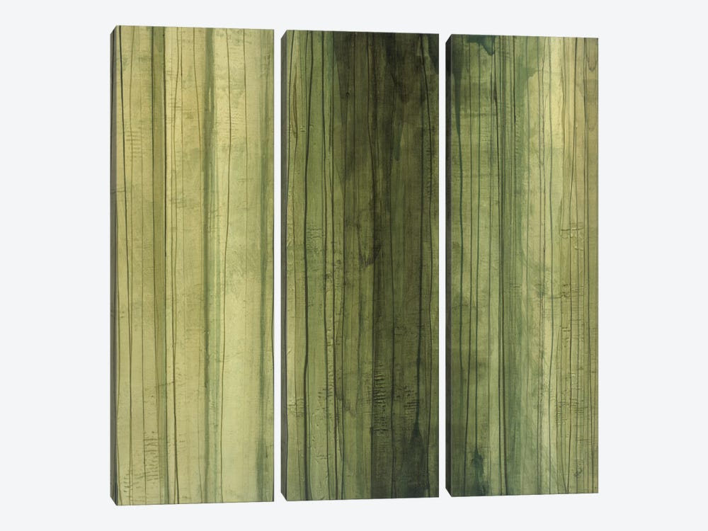 Shades Of Sage by Randy Hibberd 3-piece Canvas Wall Art