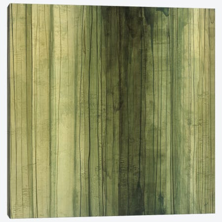 Shades Of Sage Canvas Print #HIB60} by Randy Hibberd Canvas Artwork