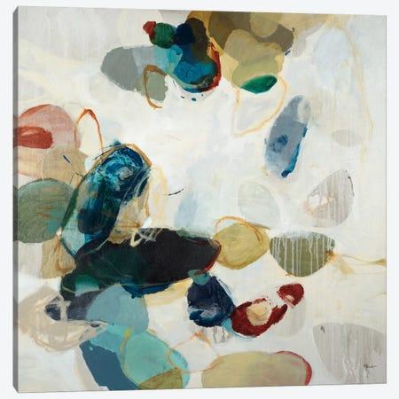 Stone Pattern II Canvas Print #HIB65} by Randy Hibberd Canvas Art Print