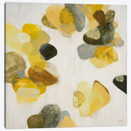 Treasure Within II Canvas Print #HIB70} by Randy Hibberd Canvas Art Print