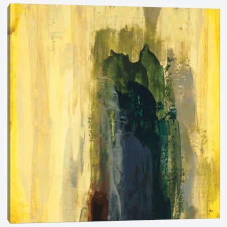 Even Flow II Canvas Print #HIB72} by Randy Hibberd Art Print