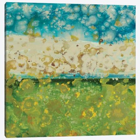 Into The Sky Canvas Print #HIB86} by Randy Hibberd Art Print