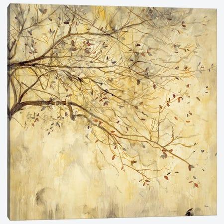 Tranquility II Canvas Print #HIB92} by Randy Hibberd Art Print