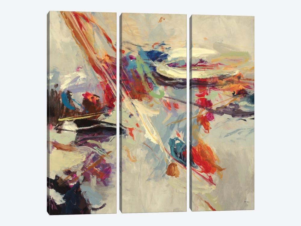 Positive Energy I by Randy Hibberd 3-piece Canvas Artwork