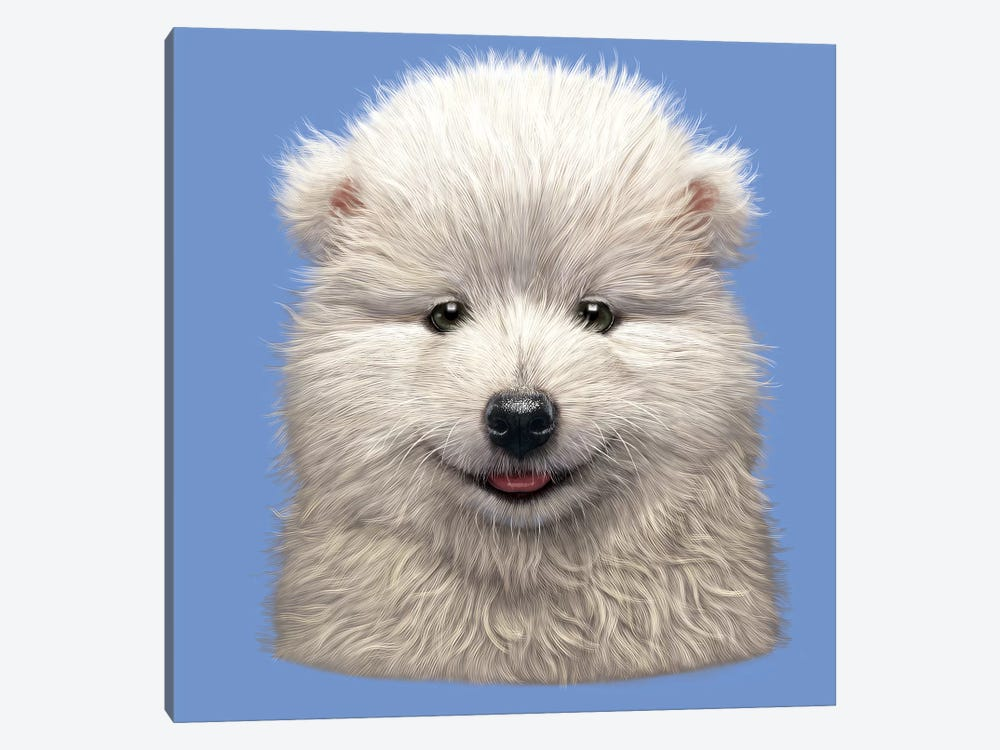 Samoyed Puppy  1-piece Canvas Wall Art