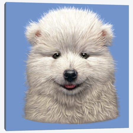 Samoyed Puppy  Canvas Print #HIE103} by Vincent Hie Canvas Artwork