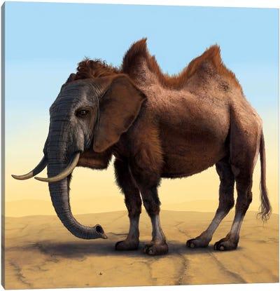 Camelephant Canvas Art Print