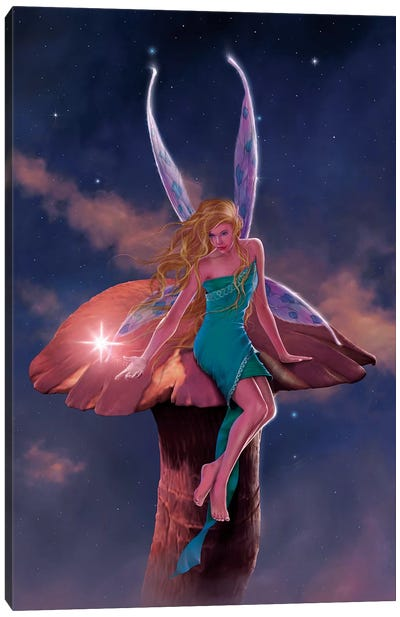 A Fairy's Wish Canvas Art Print