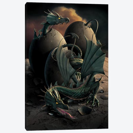 Dragon Offspring Canvas Print #HIE20} by Vincent Hie Art Print