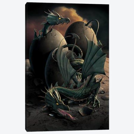 Dragon Offspring Canvas Print #HIE20} by Vincent Hie Art Print