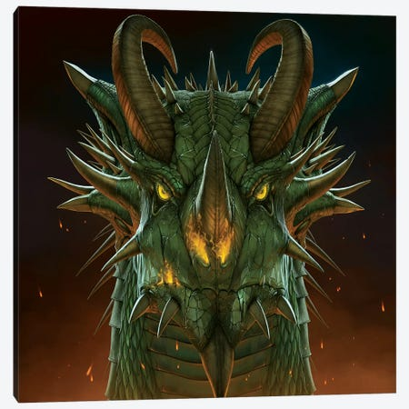 Dragon Portrait 3-Piece Canvas #HIE21} by Vincent Hie Canvas Art Print